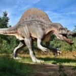 Динозавры сохранились