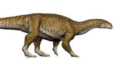 динозавр Триасовый период